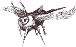 Owlmoth by mosslamb