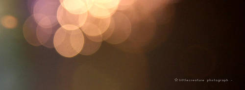 lights,,, by Vanzhoel