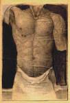 Nude man's torso. by sipsis