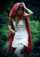 Little Red Riding Hood.3 by Julia-Green