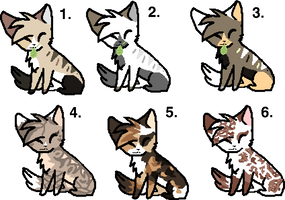Kitty Adopts|1/6|OPEN! by MaplesCrazyAdopts