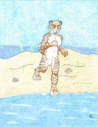 Zervon at the beach by whaletrainer2002