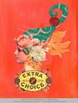 Extra Choice - Unfinished by DuirwaighStudios