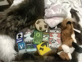 Anthrocon haul by SnippyTheDeliveryFox