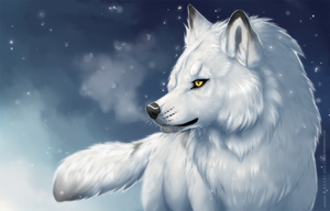 snow wolf by azzai