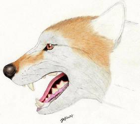 Epicyon haydeni -unfinished- by Jagroar