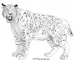 Smilodon populator drawing 2 by Jagroar
