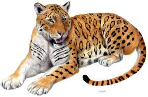 Panthera zdanskyi 'Longdan tiger' by Jagroar