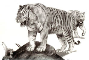 The Pleistocene Giant Tiger by Jagroar