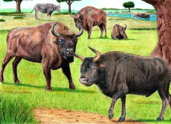 Prehistoric Safari : Pleistocene Western Europe by Jagroar