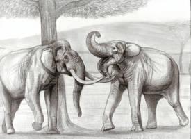 The Largest Elephants Head to Head PART2(sketch) by Jagroar