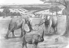 Prehistoric Safari : Super Elephants head to head by Jagroar