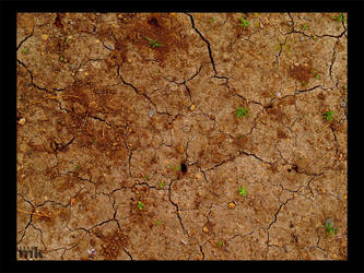 Cracked Earth by prevailing