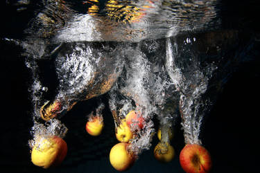 Apples in action by riba