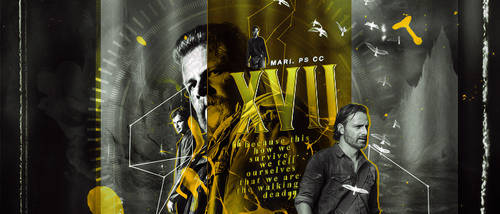 43 | XVII Gallery Header by itsmorphine