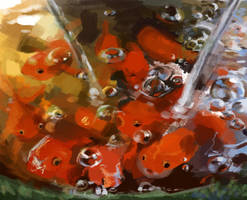 Floating Fish by lucidsky