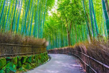 Arashiyama Bamboo Grove by LDMarin
