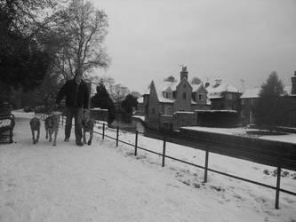 Winter walk by Juinny