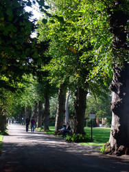 A walk in the park by Juinny