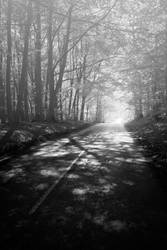 Road to Unknown by AbstractPotential