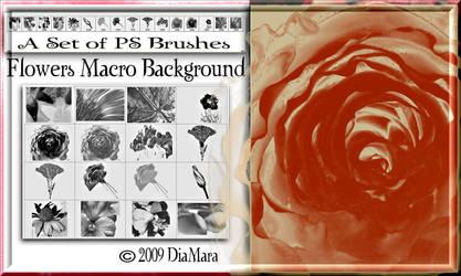 Flowers Macro Background by Diamara