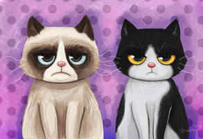 Grumpy Cats by Frog-FrogBR