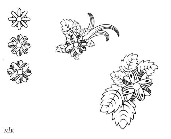 Florals by MiR-S