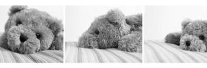 Confessions of a Teddy Bear I by rinnalynette