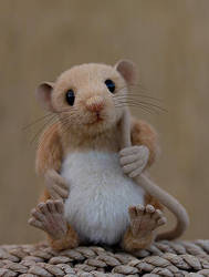 Tweenie mouse by LisaAP