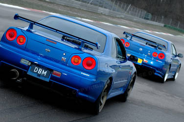 Skyline R34 GTR: double by Vipervelocity