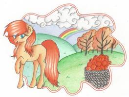 Orange Fruits by Blumydia