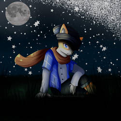 Corgi in the night by Blumydia