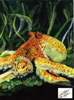 Octopus by Blythe13