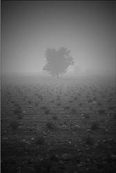 Fade Away by Osiris81