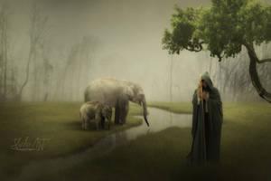 The Elephants Keeper by SlichoArt