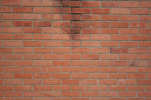 Texture 32 dirty bricks by freetextures