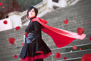 Red like roses (RWBY) by Bioadenosine