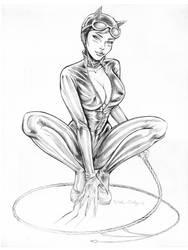 Catwoman fanart by Little-Ginkgo