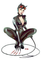 Catwoman  fanart 2 by Little-Ginkgo