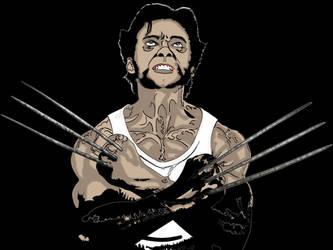 Wolverine by smejkalj