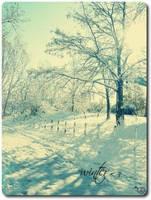 it's winter comming by kuschelkekzZ