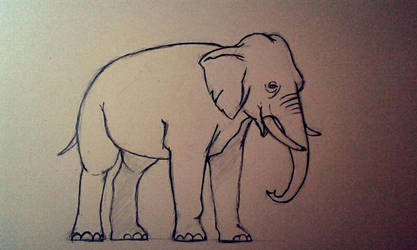 Elephant by MrPabooom