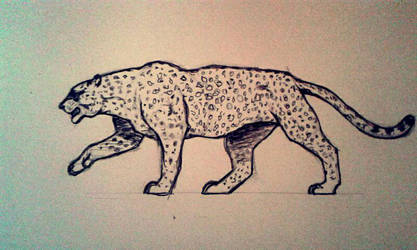 Leopard by MrPabooom