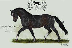 OVEC Fir Nwalme by SageSinRiddle