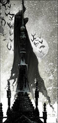 The Dark Knight by Happy-Mutt