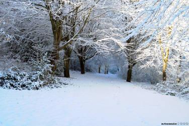 Winter Wonderland by atomic2008