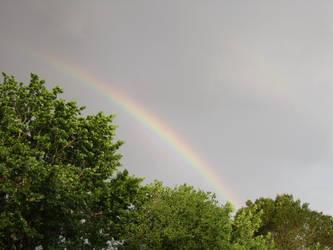 rainbow by MagnoliaGrandiflora