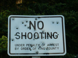 Epic Fail Sign No Shooting by Mephilez