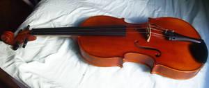 Viola 2 by photoshop-stock