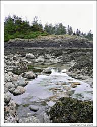 vancouver island I by gigiopolis